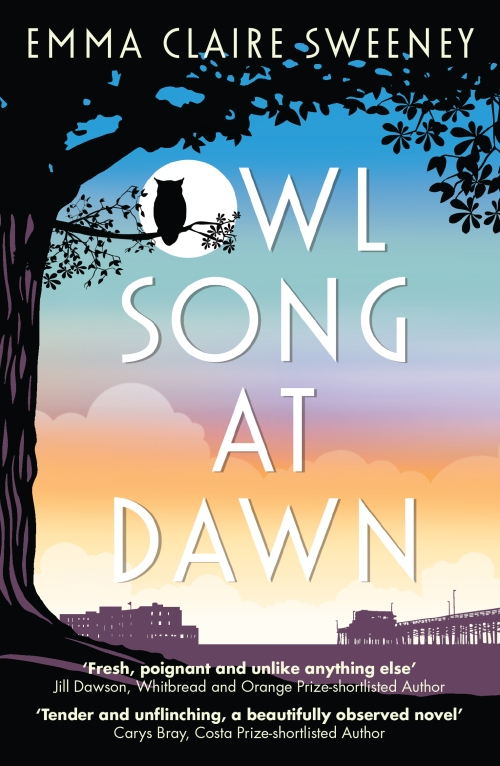 Owl Song Cover